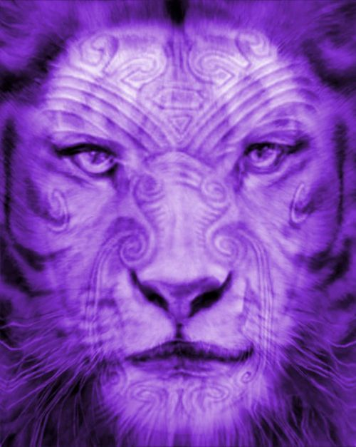 Purple Chronic Pain Lion
